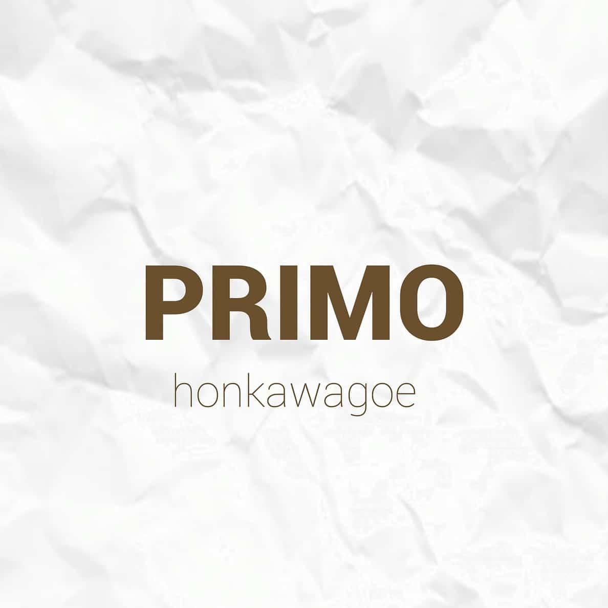 美容室Hair Make PRIMO 本川越駅店ロゴ画像